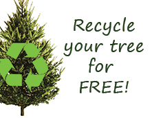 2017-Tree-Recycling